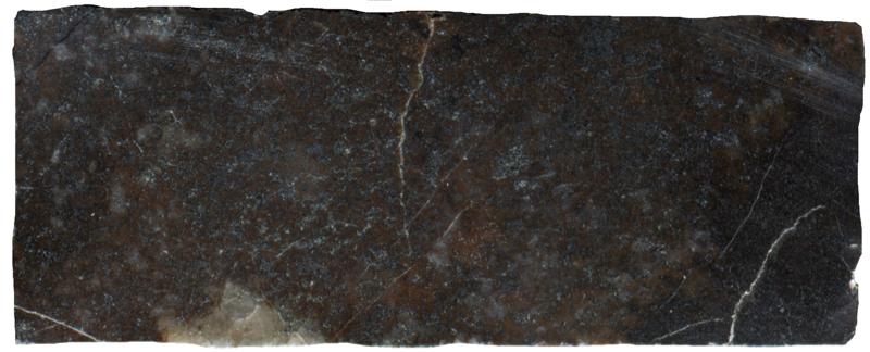 Andesite hornfels at Dunmoor Hill NT983179. Prepared sample viewed in plain reflected light  (45mm across)
